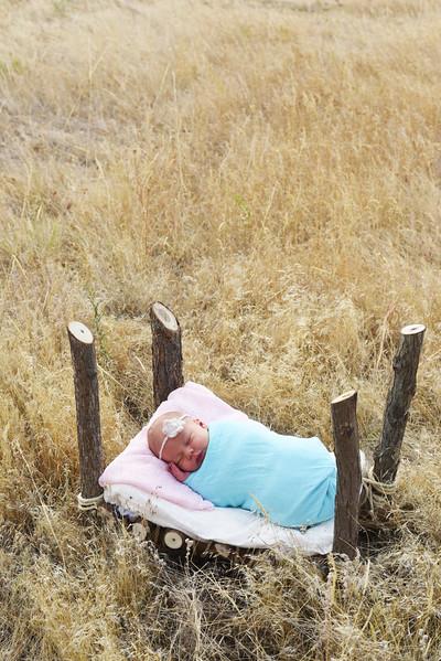Gustafson Baby Portrait