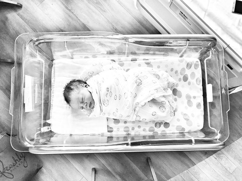 Schmidt Baby Portraits