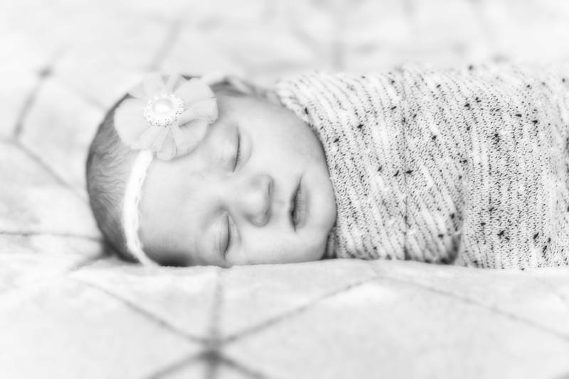 Metzger Baby Portrait
