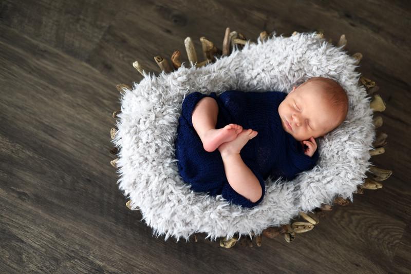 Cook Baby Portrait