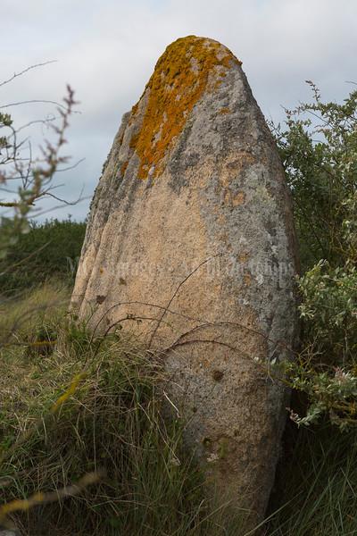 Penverne Ile grande, f/8, 1/800, iso 200, 58 mm