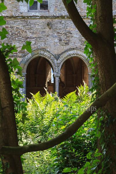 Abbaye de Beauport, Paimpol, f/9, 1/60, iso 200, 60 mm