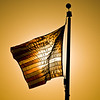 Title: Old Glory Aflame<br /> Date: September 2010<br /> An American flag at the Washington Monument, back-lit with the rising sun.