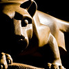 Title: Nittany Lion<br /> Date: May 2008<br /> The Nittany Lion on the Penn State campus.