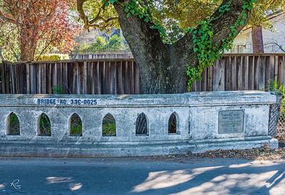 """""""Bridges of Pleasanton"""""""