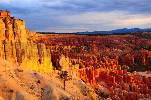 Bryce Canyon; one of the worlds most amazing and unique national parks.