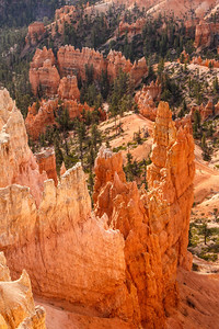 Hoodoos at Bryce Canyon Sunset Point