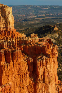 Bryce Canyon Scene at Sunset