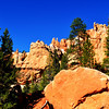 Bryce Canyon National Park in Utah 21