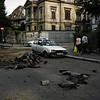 Reparation d' urgence, pres de Place Lahovary, ete 2009<br /> <br /> PS: En 11 Novembre, cette meme rue n' etait pas encore ouverte au traffic !... Alors, l' urgence, chez nous, c' est du bluff !