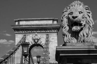 Lion guarding the Chain Bridge, Budapest