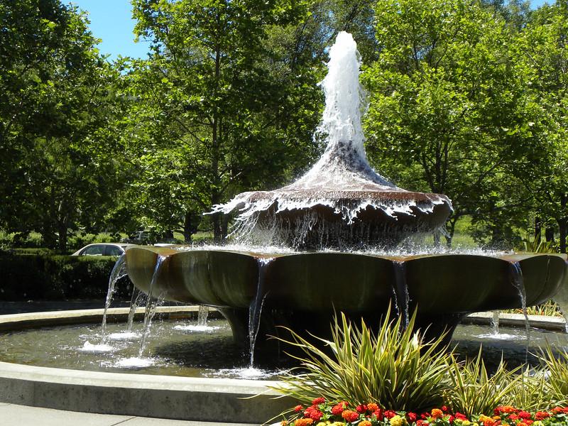 Franciscan fountain fun