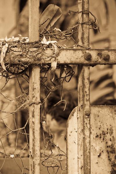 Nesting Gate