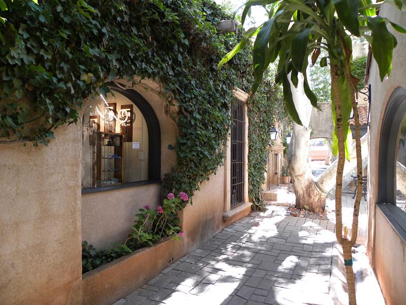 Leafy walled shop