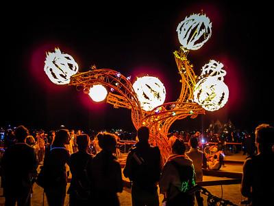 Tree of Fire