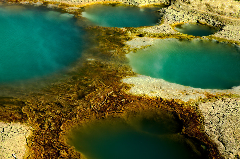 Mineral pools at Yellowstone National Park.<br /> © Cindy Clark