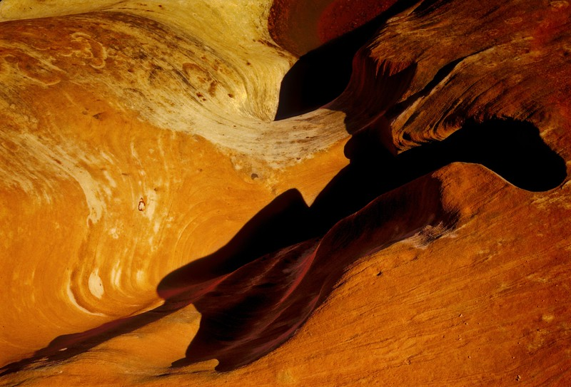 Sandscape at Arches National Park.<br /> © Cindy Clark