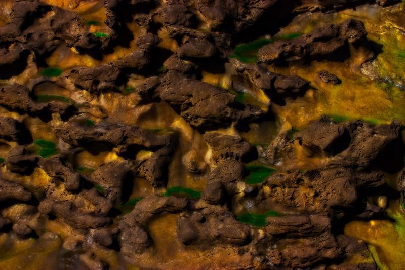 Sandstone and basalt. Shore Acres State Park, Oregon Coast.<br /> Photo © Carl Clark