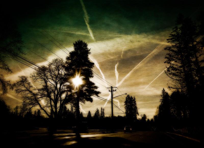 Upper Lynnwood, WA<br /> © Cindy Clark