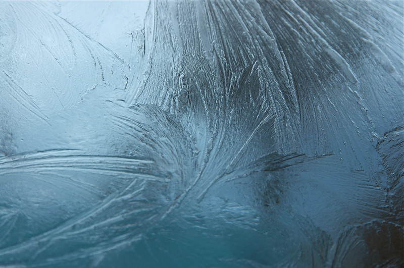 WIKI FACT: Fern frost forms when a glass pane is exposed to very cold air on the outside and moderately moist air on the inside. The glass surface influences the shape of the crystals, so imperfections, scratches, dust and bird poo modify the way the ice forms.