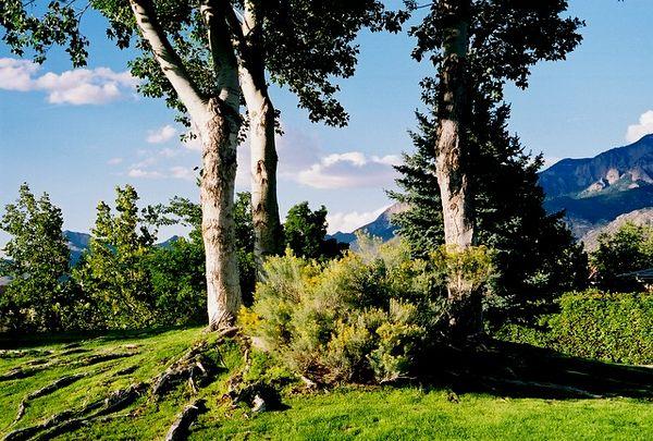 A view of the Sandias.