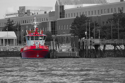 Someone had fun painting this Massport vessel fire engine red. The Massport Fire Boat American United can often be seen in the Boston Harbor shooting its water cannons into a beautiful display of water. Later this day it paraded around the harbor like a water peacock.