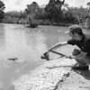 Everglades Alligator Farm -104