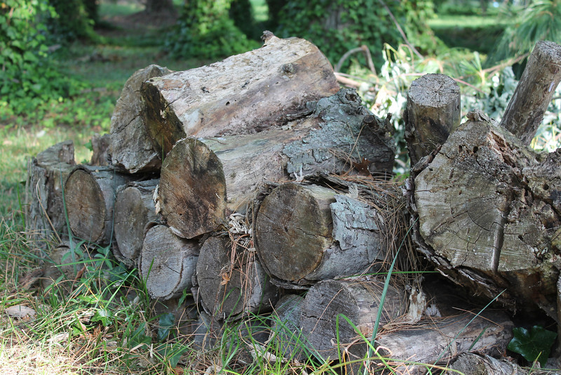 Assignment 3: Colors<br /> Grey-brown woodpile