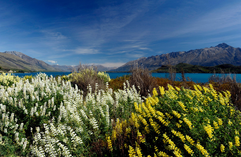 <h4>Uncompromising View</h4>Queenstown, New Zealand