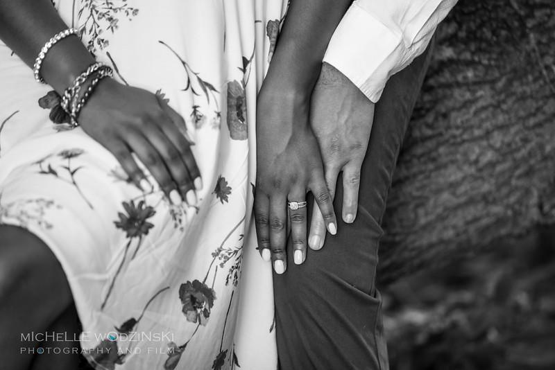 Brittney & Devon - Engagement Portraits-3468