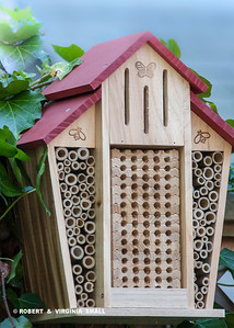 OUR NEW BEE HOTEL