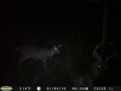 Caleb new deer camera Jan 2016