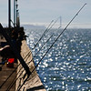10-08-11 <b>Fishing</b> San Francisco Bay<br>Berkeley, CA  (Golden Gate Bridge in the background)