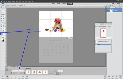 """Cropping the """"top half"""" of the calendar pages will provide a nice 11"""" x 8.5""""  white background image for use elsewhere...  Shutterfly calendar, VistaPrint Mug, etc."""