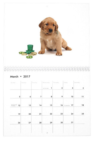 Zazzle Calendar