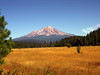 Mt. Shasta from McCloud Road