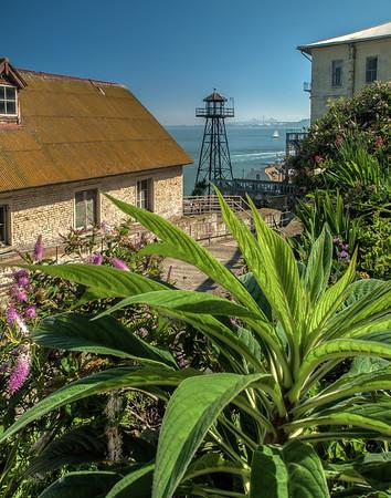 Alcatraz - 2-2014