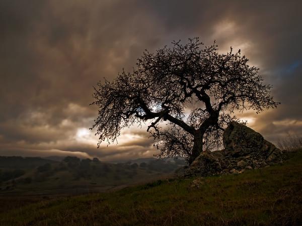 Troy Road - Santa Clara County - Sunrise