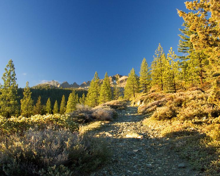 Trail to the Sierra Buttes, Sierra City, CA