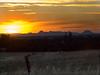 Sutter Buttes Sunset from Big Ben Road 1