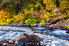 Yuba River Autumn 1_7471