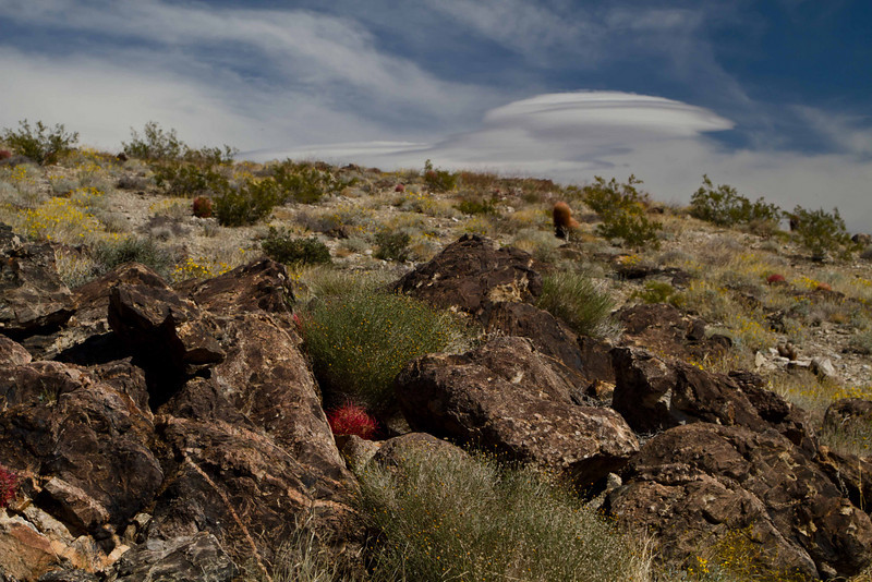 Lenticular cloud hovers over the hot landscape of Joshua Tree.<br /> Photo © Carl Clark