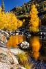 Yuba River Autumn 3_7475