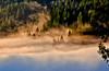 Sunrise in Boulder Creek