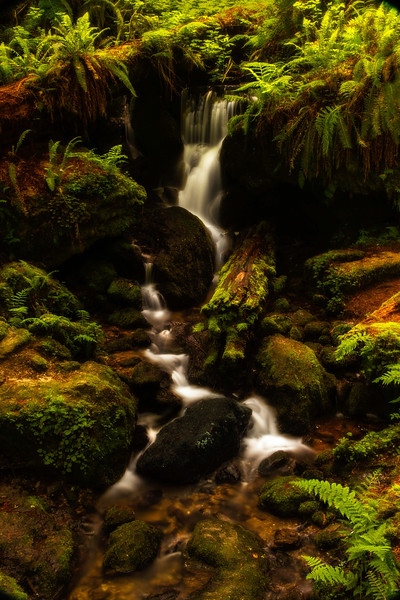 Stumbled on this hike last fall & it certainly bears repeating.  This is Trillium Falls in Northern California.<br /> Photo © Cindy Clark