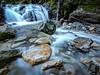 Uvas Canyon State Park