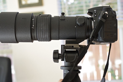Nikon AF 300 f/4.0 ED-IF mounted on D7000 on Manfrotto 234 swivel head on Manfrotto 3249 aluminum monopod.