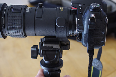 Nikon AF 300 f/4.0 ED-IF mounted on Manfrotto 234 swivel head.