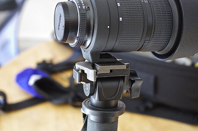 Nikon 80-200 f/2.8 AF-D mounted on Manfrotto 234 swivel head.
