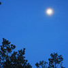 Moon in misty sky, City Park